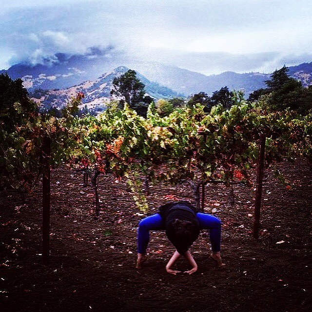 AUTUMN AUMMMMMM... Our very own Napa Valley Rain Goddess Yogini @calist_yoga_mama practicing in the vineyards of Calistoga. Nature and yoga is based on balance, after rain comes sunshine and after harvest the vines go dormant, shed their leaves and get a good rest. We mirror this cycle of life in our yoga practice with asana and savasana, to be one with nature. Autumn AUM to y'all... www.yoga-journeys.com#yogajourneyswithulrika #yogalife #yogadaily #yogalifestyle #yogajourneys #yogajournal #yogapants #yogachallenge #yogainspiration #yogaretreat #yogaeverydamnday #yogapractice #yoga #aum #autumn #yogalover #yogapose