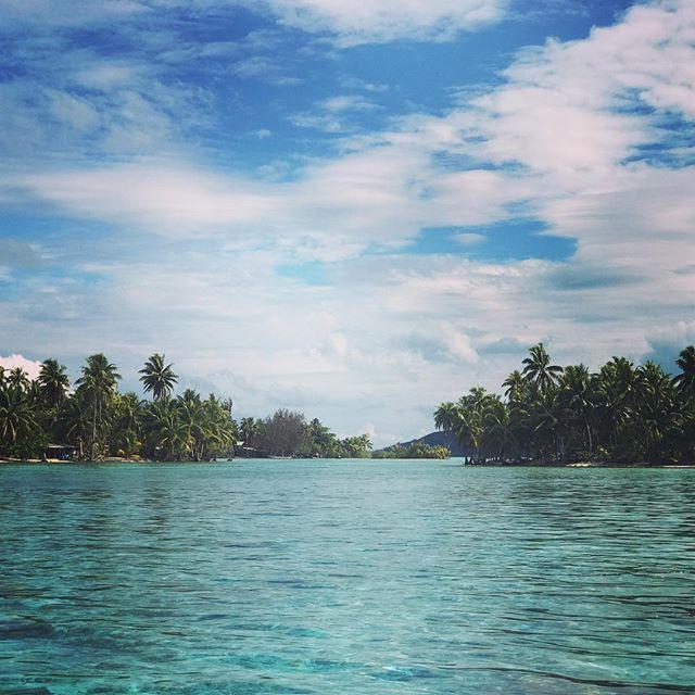 Absolute bliss in an idyllic paradise on the YOGA JOURNEY to TAHITI#yogaretreat #yogajourney #yogajourneyswithulrika #yogajournal #yogainspiration #retreat #yogalife #yogalifestyle