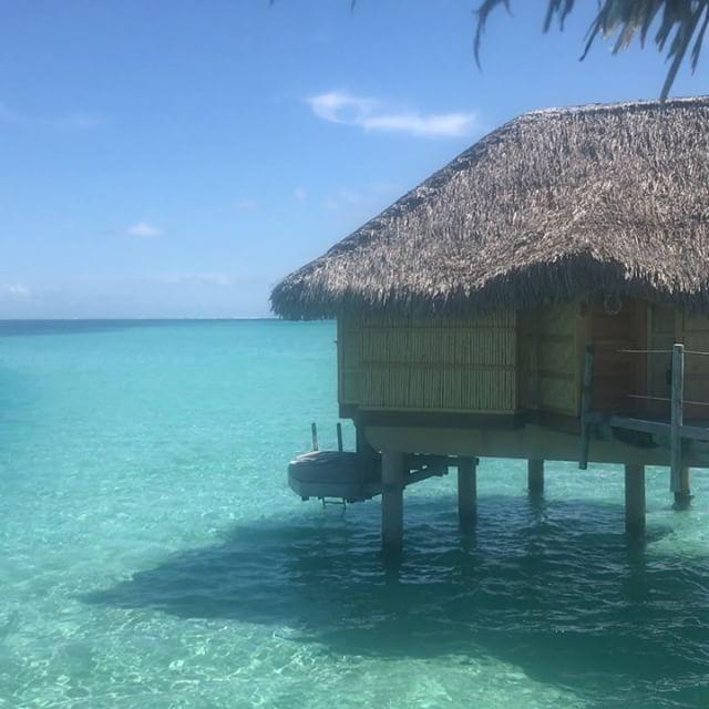Life on the Yoga Journey to Tahiti / French Polynesia. Want join me next year? Dates set before Christmas 2018 ?♀️ #yogajourneyswithulrika #yogalove #yogainspirations #yogainspiration #yogaretreat #yogajourney #yogafun #yogatravel #yogaeverywhere #yogalifestyle #yogalife #yogapractice #travel #travelblogger #yogaeveryday