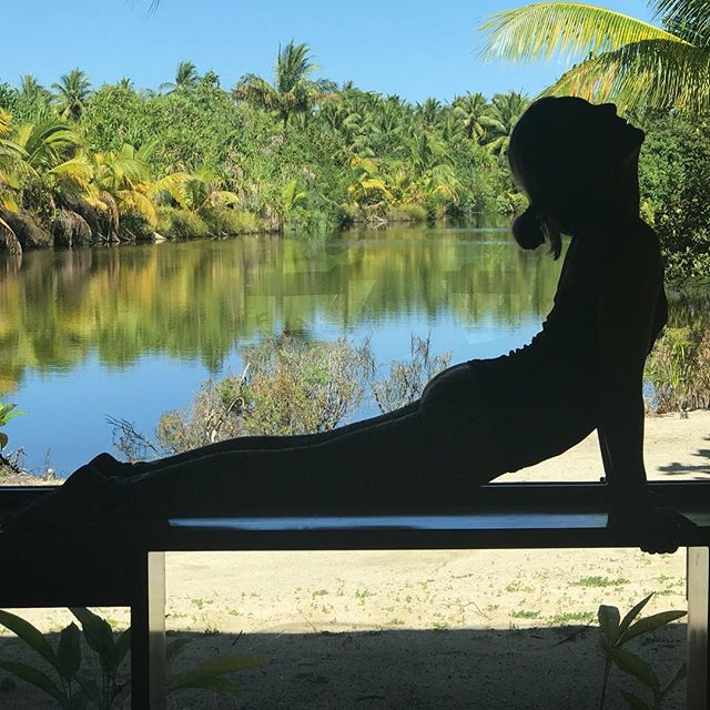 This view is our backdrop while practicing on the Yoga Journey in Tahiti. It uplifts and inspires, cools and soothes aching muscles and inspires us to dissolve the tensions and patterns the arise through practice. Updog is a practice in looking up... picking oneself back up when down. Down happens, up is a mindset.#yogajourneyswithulrika #yogalove #yogainspiration #yoga #yogatime #yogaeveryday #yogaeverywhere #yogalifestyle #yogaretreat #yogaphotography #yogaeverydamnday #instayoga #iloveyoga #yogalover #yogapractice #up #mindset #mindovermatter #yogalife #namaste