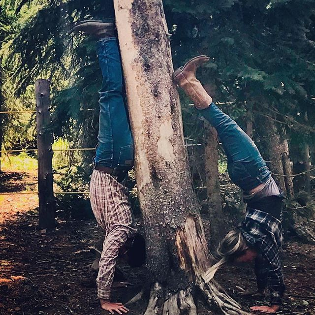Yoga in the corral works too. Our yoga practice is as flexible and open as our minds. Personally I so prefer practicing real life yoga outside of the studio, becoming resilient by adapting to nature. Life has so much to offer when we get down and dirty with the earth. .....#yogajourneyswithulrika #yogalife #yogalover #horselover #cowgirl  #cowboy #yogalife #yogafun #yogainspiration #yogalifestyle #yogafun #yogaeverywhere #yogaeveryday #yogagram #instayoga #yogatravel #yogalove #yogisofinstagram #yogapractice #handstand #handstands #trees #balance #life #wyoming #grandtetons #yoga #yogapants