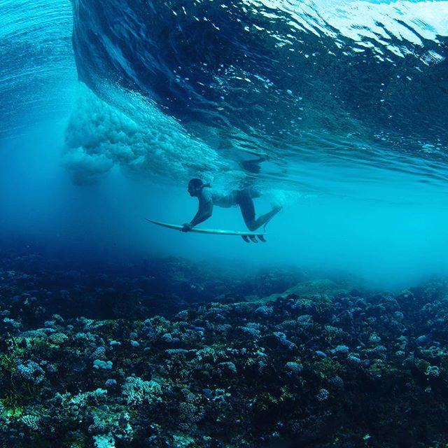Here's yogi Ryan taking on the coral surf on the Yoga Journey in FIJI... putting his yoga practice to the test! What do you think? Pretty awesome?!....#yogajourneyswithulrika #yogaretreat #fiji #surfing #yogatravel #yogalife #yogafun #yogainspiration #yogi #yogisofinstagram #yogalove #yogalife #flow #now #yogaeverydamnday #yogaeveryday #instayoga #yogatime #yogadaily #yogapractice #yogafitness #yoga #motivation #inspiration #inspire #yogini #yogabody #yogachallenge #yogaprogress #yogapractice