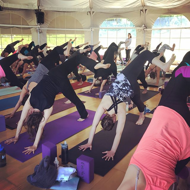Wave upon wave of gratitude to the places, practices and people that keep calling me back; Esalen, Big Sur, the ocean, Yoga and you know who you are ️ ... to be continued.......#yogajourneyswithulrika #esalen #bigsur #yogapractice #yogatime #yogatravel #yogateacher #travelblogger #yogafam #yogalove #yogalover #yogalife #yogalifestyle #yogisofinstagram #yogafun #yogainstructor #yogainspiration #yoga #yogaeveryday #yogaretreat #yogajourney #yogajournal #yogi #yogaeverywhere #yogaeveryday #yogalove #yogalover #yogacommunity #instayoga