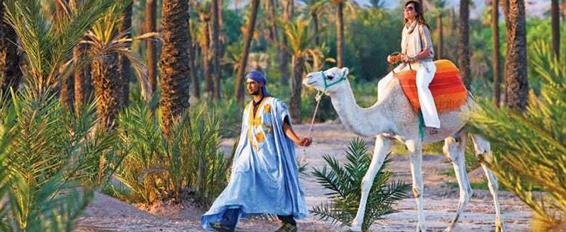 Journeys - Morocco 2020